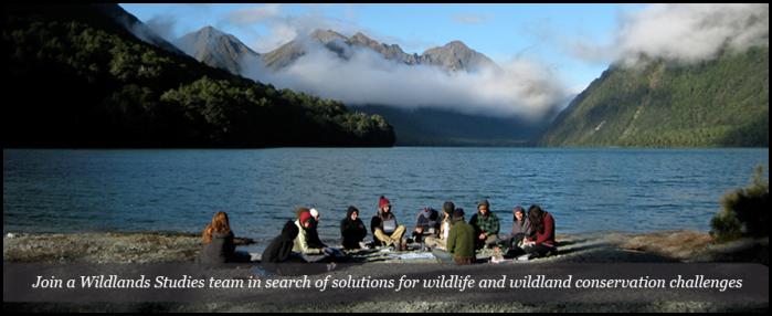 wildlands-header-image