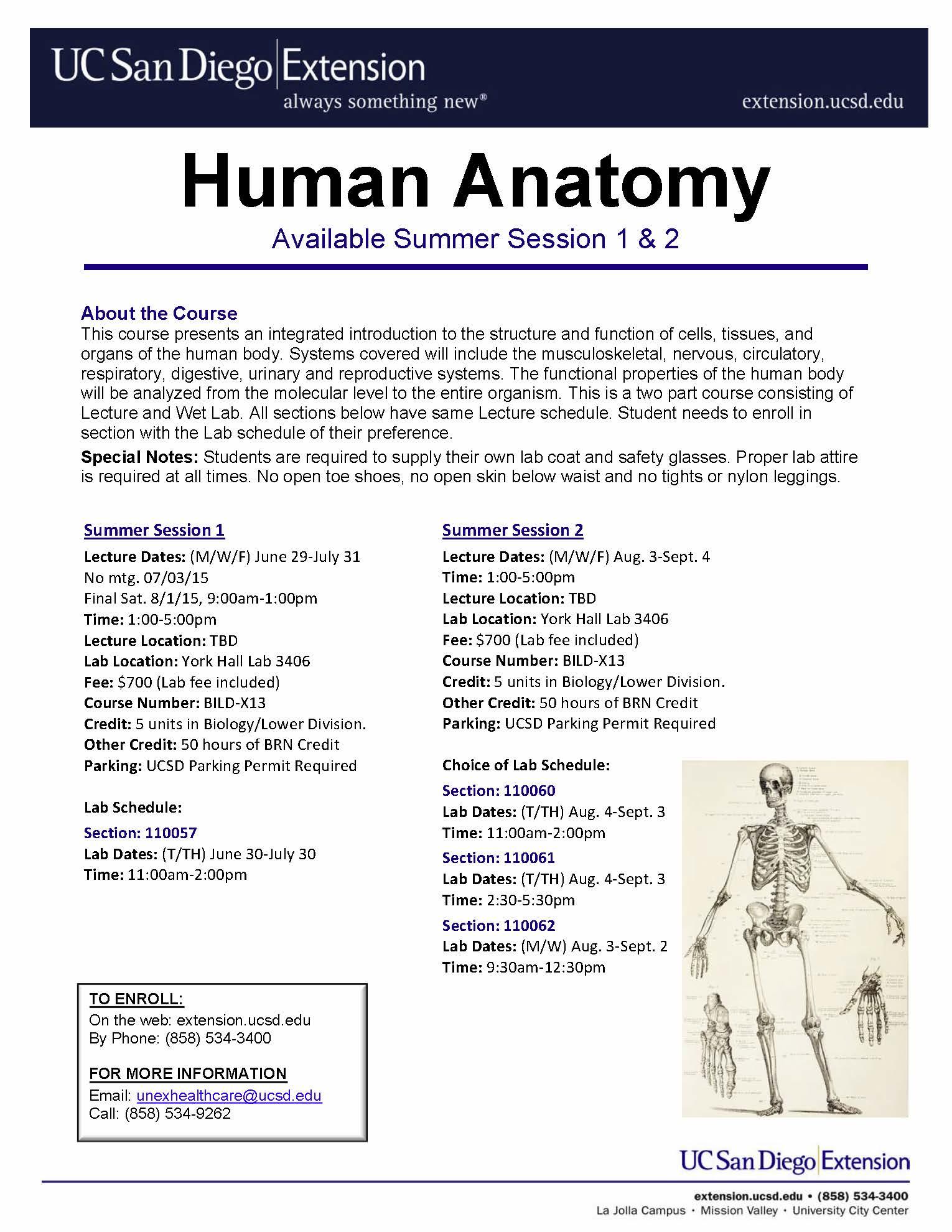 Anatomy Lab | UC San Diego - Biology Bulletin