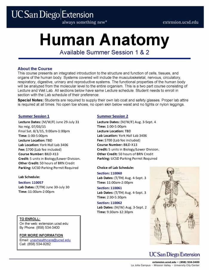 Human Anatomy Flyer SU15 v.2
