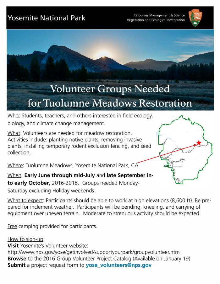 TuolumneRestoration_VolunteerFlyer (1)